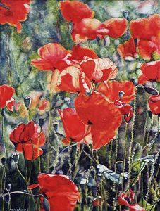 I papaveri della Toscana (2001), watercolour 36,5 x 27 cm - Sold