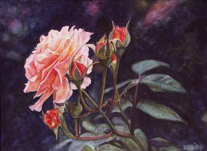 My roses VI (1998), watercolour 16,5 x 24 cm - Sold