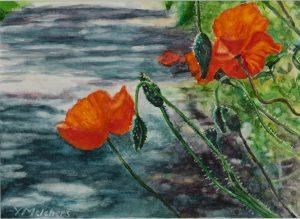 Papaveri a Pacina, watercolour 13 x 18 cm - Euro 395
