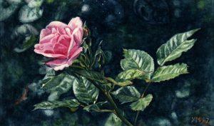 Sunny rose in E. (1997), watercolour 14,5 x 24 cm - Sold